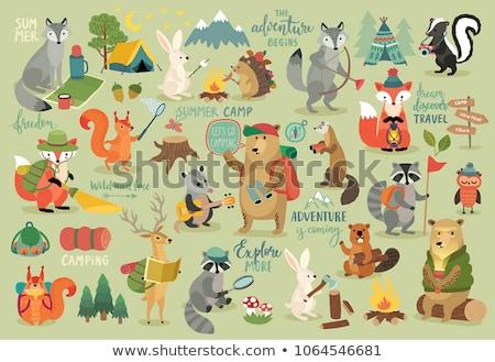 establecer · camping · elemento · ilustración · casa · árbol - foto stock © colematt