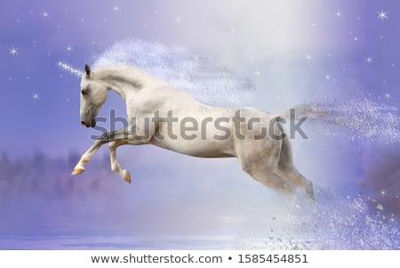 Happy unicorn on sky Stock photo © bluering