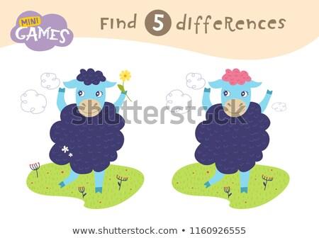 finding differences game with farm sheep stock photo © izakowski
