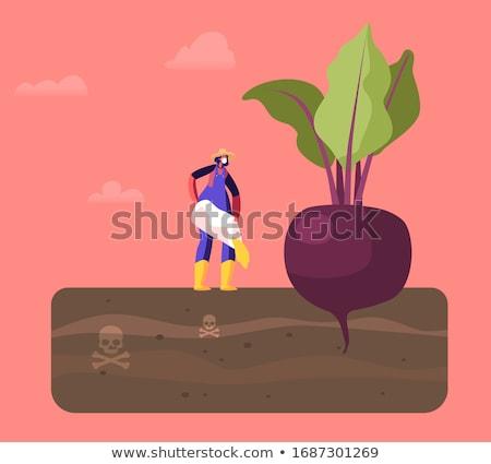 Kadın çiftçi çiftlik vektör işçi Stok fotoğraf © robuart