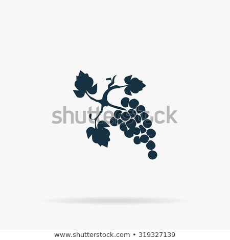Bunch of grapes icon with shadow. Flat vector illustration Stock photo © Imaagio