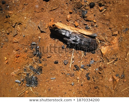 Stock photo: A burnt log lying in ashes