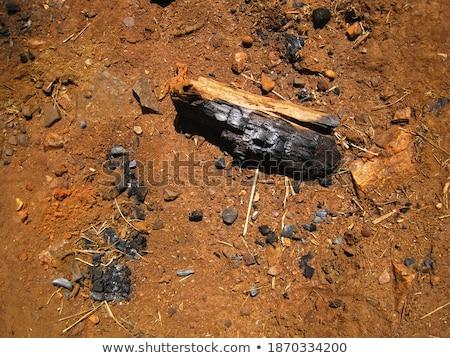 火災 · 熱 · 黒 · 石炭 · 木材 · 建物 - ストックフォト © trgowanlock