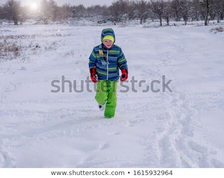 Kış tatil insanlar kartopu arkadaşlar Stok fotoğraf © robuart