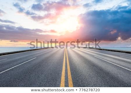 шоссе дороги дерево Сток-фото © CarmenSteiner