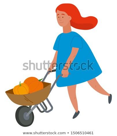 Girl Carrying Pumpkins Harvest in Wheelbarrow Stock photo © robuart