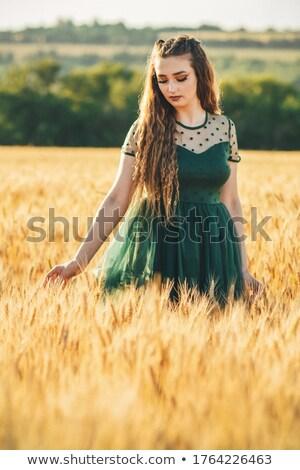 gyönyörű · nő · hosszú · estélyi · ruha · vonzó · fiatal · nő · visel - stock fotó © lovleah