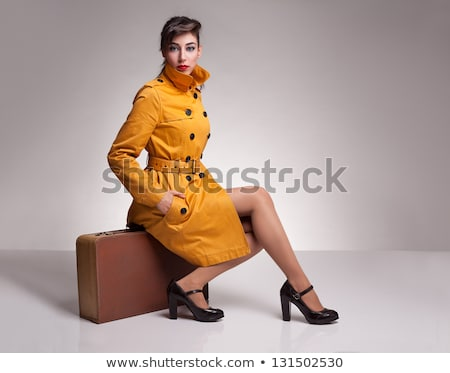Mooie brunette koffer portret meisje poseren Stockfoto © zastavkin