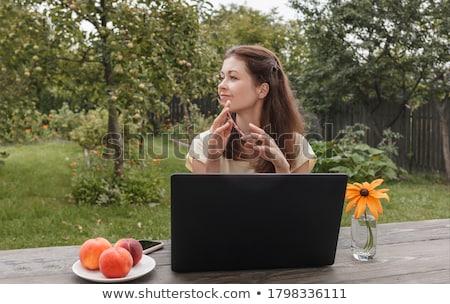 nő · laptop · mező · fű · ír · portré - stock fotó © hasloo