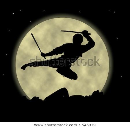 ниндзя Flying меч иллюстрация истребитель человека Сток-фото © vectomart