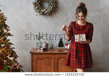 aantrekkelijk · meisje · gedekt · witte · bont · portret · mooie - stockfoto © carlodapino