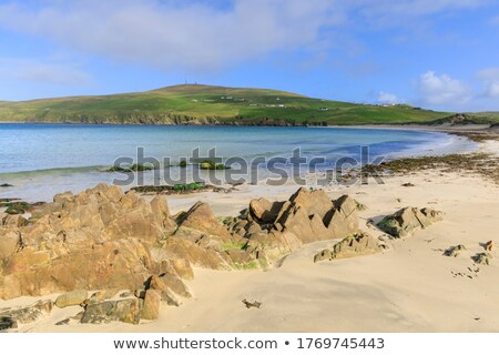 Cottages on a pristine white beach Stock photo © get4net