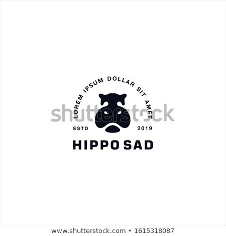 head of hippo stock photo © jonnysek
