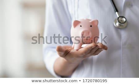 Piggy money box Stock photo © zzve