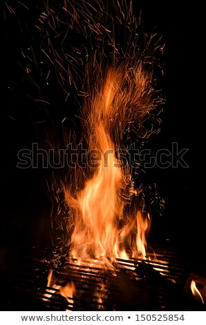 Dance whit fire Stock photo © Lighthunter