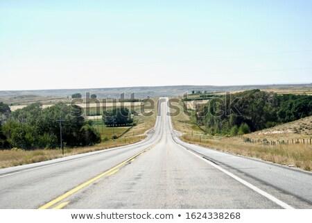 American truck on Wyoming highway Stock photo © CaptureLight