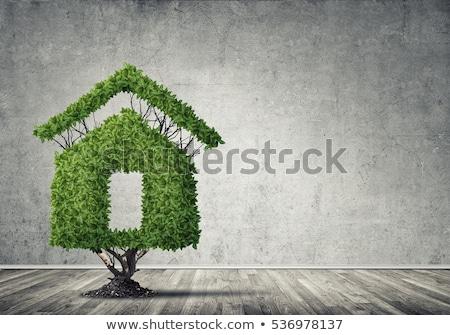 eco friendly house - real estate icons Stock fotó © djdarkflower