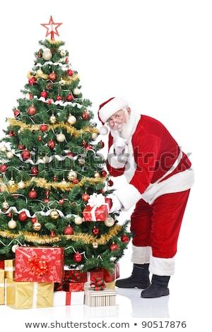 santa claus bringing gifts and putting under christmas tree stock photo © hasloo