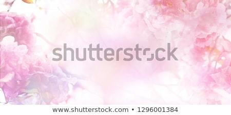 Retro-stijl bloemen collage bloem abstract achtergrond Stockfoto © Lizard