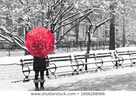 黒 傘 ベンチ 雨 女性 値下がり ストックフォト © SolanD