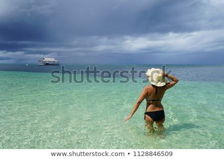 wolności · bikini · kobieta · ocean · wody - zdjęcia stock © smithore