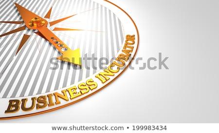 business incubator on white with golden compass stock photo © tashatuvango