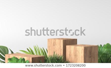 Blank pedestal Stock photo © montego