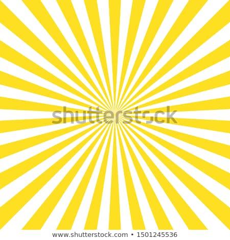 Sunrays Stock photo © pancaketom
