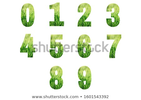 Dígitos verde gramado conjunto branco 3D Foto stock © tashatuvango
