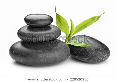 boglya · fürdő · forró · kövek · izolált · fehér - stock fotó © tetkoren