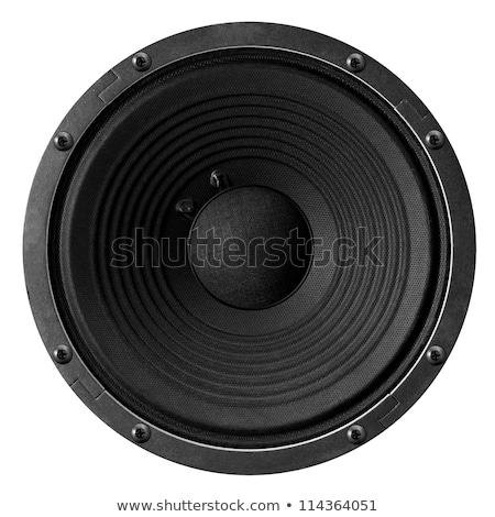 Speaker membrane Stock photo © Alsos