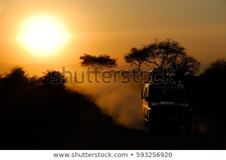 cross-country vehicle Stock photo © tracer
