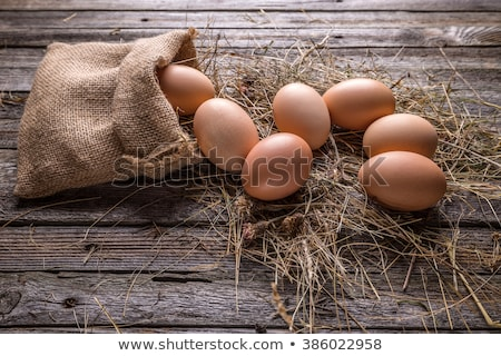 Chicken eggs in a nest on a wooden rustic background Stock photo © vlad_star