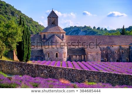 Cloister of Senanque Abbey, Vaucluse, Gordes, Provence, France Stock photo © meinzahn