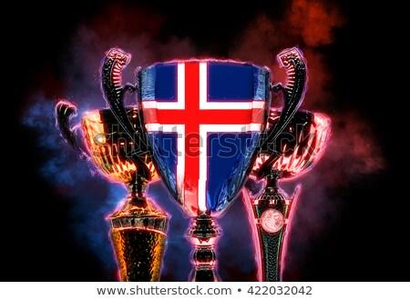 Troféu copo bandeira Islândia ilustração digital Foto stock © Kirill_M