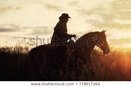 male athlete rides on horse Stock photo © OleksandrO