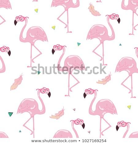 small pink flamingo flower stock photo © klinker