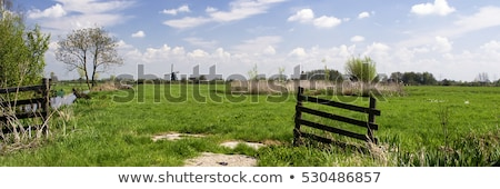Beautiful rural landscape, fence, field, windmill Dutch windmill. Stock photo © mcherevan