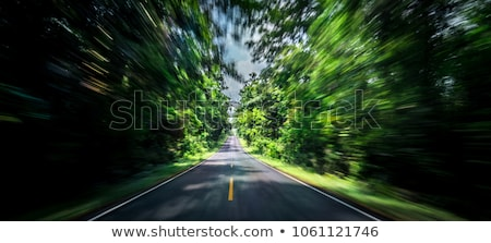 nature motion blur abstract Stock photo © PixelsAway