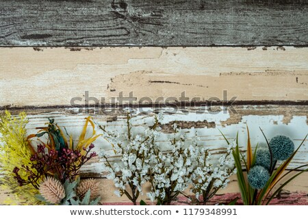 Foto stock: Cair · azul · flores · colorido · folhas · copiar