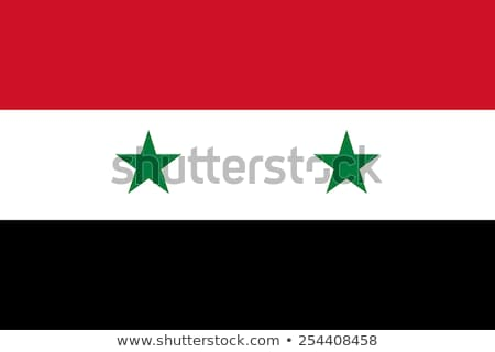 syria flag vector illustration stock photo © butenkow