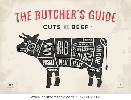 Cut of animals meat, diagram for butcher. Meat cut set Stock photo © MarySan