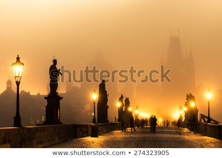 Illuminated bridges in Prague Stock photo © Givaga