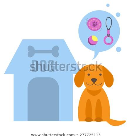 Osso cães animal de estimação compras item filhotes de cachorro Foto stock © robuart