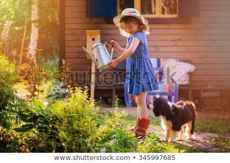 Menina jardim cão ilustração natureza Foto stock © colematt