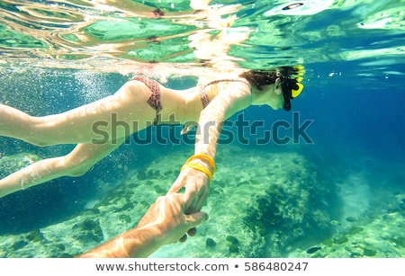 follow me scuba diving travel and tourism stock photo © studiostoks