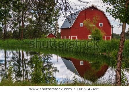 Czerwony stodoła konia scena ilustracja niebo Zdjęcia stock © bluering