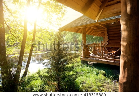 Log house in nature Stock photo © colematt