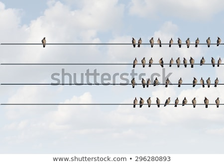 Stock photo: Birds on a wire #1