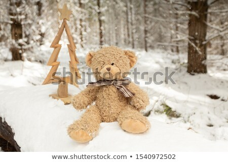 Scruffy bear and rustic Christmas tree in snow Stock photo © lovleah